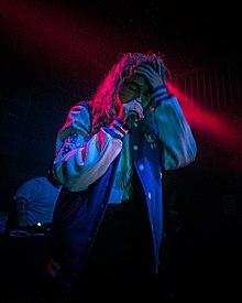 Pouya (rapper) Wiki,Biography, Net Worth