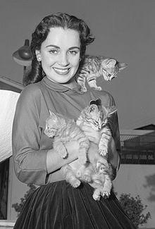 Susan Cabot Wiki,Biography, Net Worth