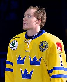 Niclas Burström Wiki,Biography, Net Worth